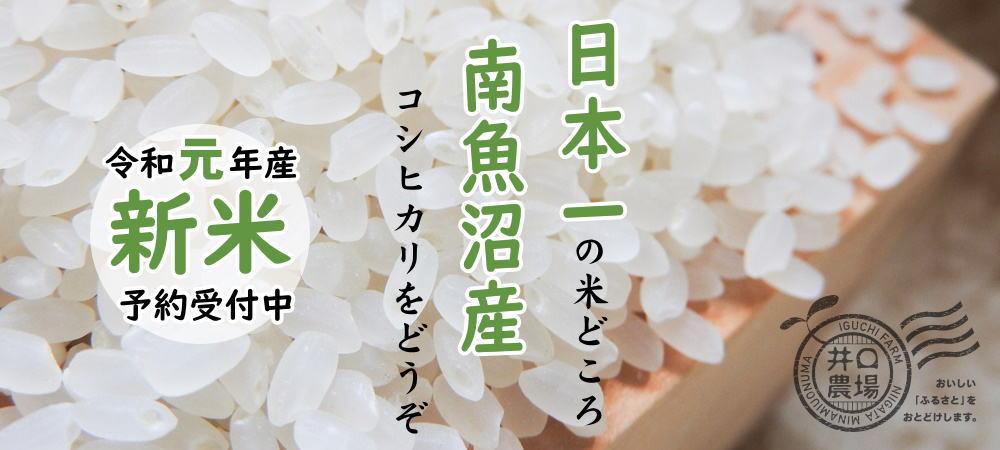 令和元年産新米予約受付中~日本一の米どころ、南魚沼産コシヒカリをどうぞ