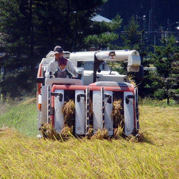 「日々、心ときめかして」 農作物を創る