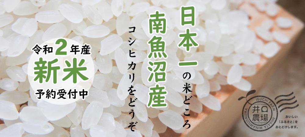 令和2年産新米予約受付中~日本一の米どころ、南魚沼産コシヒカリをどうぞ