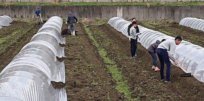 魚沼の春...農作業が始まりました