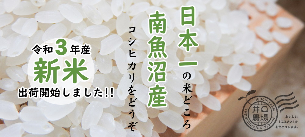 令和3年産新米新米出荷開始しました~日本一の米どころ、南魚沼産コシヒカリをどうぞ